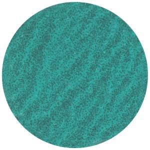 Sanding material Tyrolit T112411; 50 mm